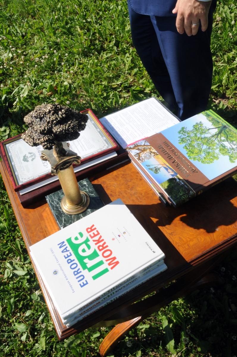 18 октября – 11 лет Всероссийской программе «Деревья-памятники живой природы»!